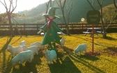 【e卡農場玩樂趣】桃園《綠光森林富野綿羊農場》許願竹DIY/餵羊/農場風味餐-1日遊單人兌換券