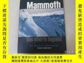 二手書博民逛書店MAMMOTH罕見THE SIERRA LEGENDY19865