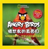 (二手書)Angry Birds憤怒鳥的真面目:50種橫眉豎目、怒氣沖沖的憤怒鳥類