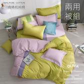 單人床包冬夏兩用被套三件組【 DR850 羅伯特 綠X粉 】 玩色系列 100%精梳棉 台灣製 OLIVIA