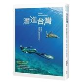 潛進台灣(島民們讓我們重返海洋吧.關於潛水.攝影.淨灘16個愛上海洋的方式)