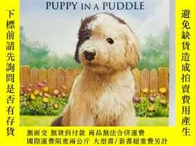 二手書博民逛書店Animal罕見Ark Classics: Puppy in a