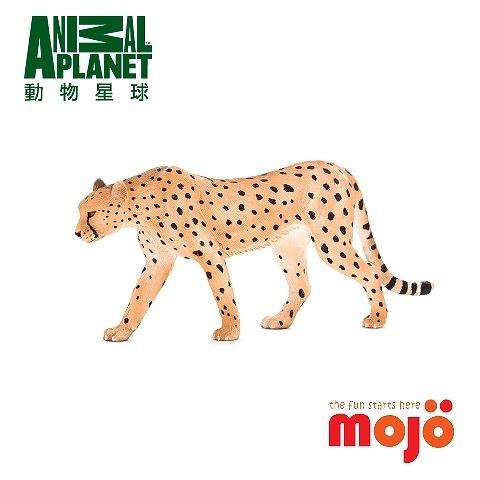 《MOJO FUN動物模型》動物星球頻道獨家授權 -非洲獵豹