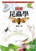 圖解昆蟲學