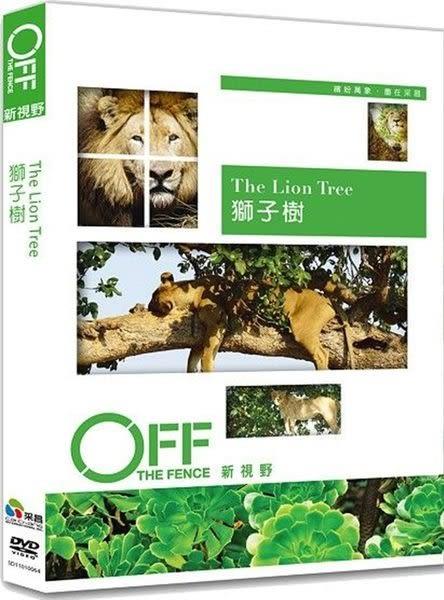 獅子樹 DVD  (購潮8)