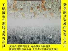 二手書博民逛書店The罕見Successors Jerry Agada 【中文名