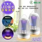 2入【捕蚊之家】充插二用電擊式捕蚊燈/滅蚊燈(CJ-008)夜燈/吊環設計