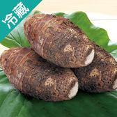 【台灣】特級鮮甜大甲芋頭 600~700G/粒【愛買冷藏】