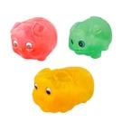 豬公存錢筒(大) 豬公撲滿 撲滿 豬撲滿 儲蓄 塑膠豬公存錢筒 小豬存錢筒 小豬撲滿