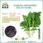 【綠藝家】大包裝A86.大葉芝麻菜種子30克 (約14500顆)