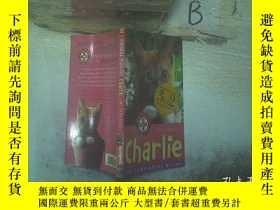 二手書博民逛書店ANIMAL罕見RESCUE charlie 動物救援查理 (01)Y261116