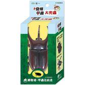 發條甲蟲:大兜蟲