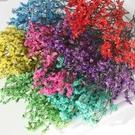 永生花花材,多色水晶草,每份3克裝(買三送一.顏色隨機)