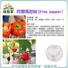 【綠藝家】G80.阿爾瑪甜椒種子3顆