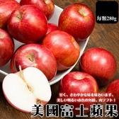 每顆54元起【果之蔬-全省免運】美國巨無霸富士蘋果X12顆(280g±10%/顆)