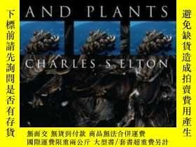 二手書博民逛書店The罕見Ecology Of Invasions By Animals And PlantsY364682