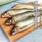 爆卵母香魚*1盒(12隻/1公斤/盒)