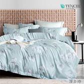 ☆吸濕排汗法式柔滑天絲☆ 特大 薄床包兩用被四件組(加高35CM)《漫步時》