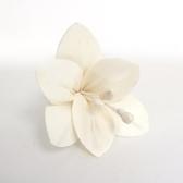 lovel sola紙花香氛擴香花朵(白百合)