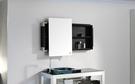 【麗室衛浴】簡潔和風 設計簡約 鏡櫃