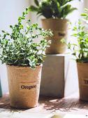 仿真植物假植物綠植室內外裝飾小清新盆栽小綠蘿盆栽仿真花草植物