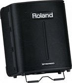 唐尼樂器︵公司貨 Roland BA330 易攜式 PA 音箱/立體聲電池供電街頭藝人專用音箱(含數位效果器)