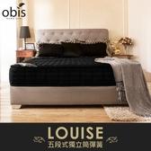 OBIS鑽黑系列-Louise五段式獨立筒無毒床墊/雙人加大6尺/H&D東稻家居