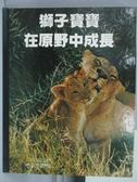 【書寶二手書T9/少年童書_ZAK】獅子寶寶在原野中成長_小小探險家叢書精選