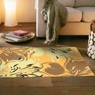 范登伯格 奧瓦柔亮絲質感地毯-迷蝶(黃)-70x120cm