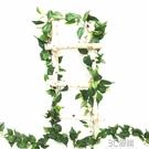 新款仿真綠蘿長藤垂掛裝飾藤蔓屋頂管道纏繞藤條綠植工程軟裝造景 3C優購