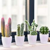 創意ins北歐家居裝飾品多肉仙人掌仿真植物盆栽擺件辦公室擺設