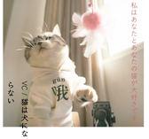 【全館】現折200新品手工仙女羽毛絨球鈴鐺逗貓棒寵物貓咪玩具用品