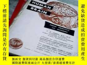 二手書博民逛書店THE罕見HUMAN BRAIN:FROM PRIMITIVE
