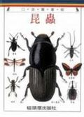 (二手書)昆蟲(口袋書)