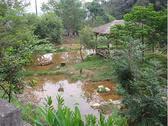 【e卡農場玩樂趣】南投《桃米生態村》桃米生態體驗-1日遊單人兌換券