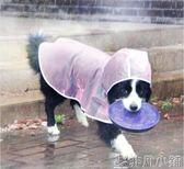 狗雨衣小型犬防水泰迪狗狗雨衣中型犬邊牧小狗比熊透明寵物雨披  非凡小鋪