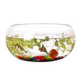 魚缸透明玻璃辦公桌創意水培圓形龜缸小型烏龜迷你桌面金魚小魚缸 萬聖節服飾九折