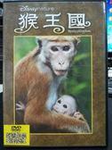 影音專賣店-P06-310-正版DVD-電影【猴王國】-迪士尼