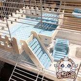 倉鼠籠平臺托盤梯子倉鼠金絲熊花枝非迷觀景臺玩具用品 雲雨尚品