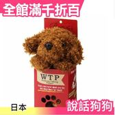 【小福部屋】【貴賓狗】日本 WTP說話狗狗 可說話 說話 模仿 安啾倉鼠相似款 交換禮物 生日 聖誕