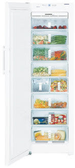 LIEBHERR 德國 利勃 SGN3011 獨立式冷凍櫃 (256L)【零利率】