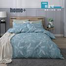 【BEST寢飾】雲絲絨 鋪棉兩用被床包組 單人 雙人 加大 特大 均一價 葉之夏 舒柔棉 台灣製造