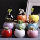 CARMO多色簡約風小圓球陶瓷盆 多肉植物花盆盆栽【CI17006】