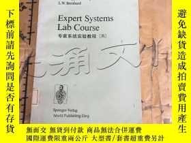 二手書博民逛書店Expert罕見Systems Lab CourseY11418