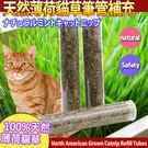 【 培菓平價寵物網】美國Cosmic Catnip宇宙貓》100%天然薄荷貓草筆管補充三入*3