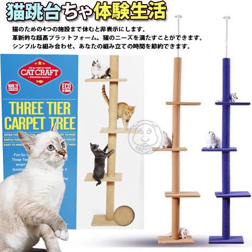 【培菓幸福寵物專營店】dyy》超長大型貓爬樹3way頂天豪華貓跳台