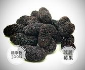 【誠麗莓果】急速冷凍桑葚300克 全館商品799免運
