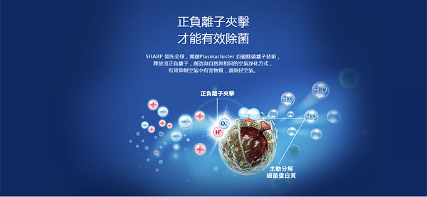 SHARP 夏普 19坪 自動除菌離子空氣清淨機 FP-J80T-W