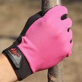 【雙11折300】戶外登山開車防滑運動騎行防曬防滑觸屏手套