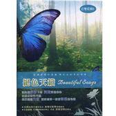 音樂花園-絕色天籟CD (10片裝)